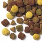 Tiernahrung ohne Zusatzstoffe